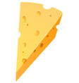 cheese on white background vector image