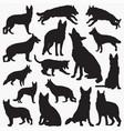 german shepherd silhouettes vector image vector image