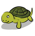 happy turtle with a cute face color on white vector image