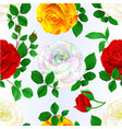 seamless texture rose various stem with leaves vector image vector image