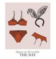 sexy lingerie set bra and undies underwear vector image