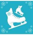 Skating icon design vector image vector image