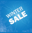 winter ice sale set snow cold sale banner vector image