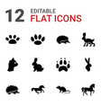12 pet icons vector image vector image