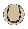 baseball ball isolated vector image vector image