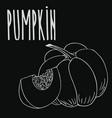 chalkboard ripe squash or pumpkin vector image
