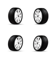 Collection of car wheels and racing tire isolated vector image