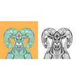 coloring book big horn sheep head vector image vector image