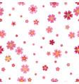 pink cherry sakura japanese spring flowers vector image