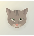 Portrait of a lady cat vector image vector image