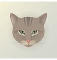 Portrait of a lady cat vector image