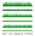 Set of Backgrounds Of Green Grass Isolated On
