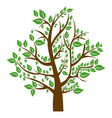 silhouette tree with brown trunk and green leaves vector image vector image