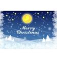 Snowflake christmas background vector image