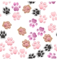 cat and dog paw print with claws vector image
