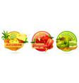 decorative round labels for ice cream or ice pops vector image