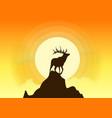 deer silhouette sunset vector image