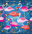 different pattern flamingos vector image