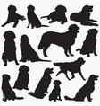 golden retriever silhouettes vector image