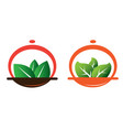 green meal vector image vector image
