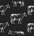 hand drawn cow seamless pattern farm on chalk vector image vector image