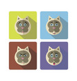 set of cute cartoon cat with various emotions vector image