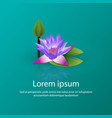 blooming lily lotus vector image