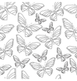 Butterfly4 vector image vector image