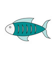 delicious fresh fish vector image