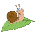 Happy Cartoon Snail On A Leaf vector image vector image