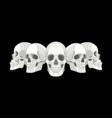 human skull sides vector image