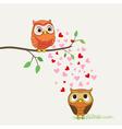owls in love cartoon vector image