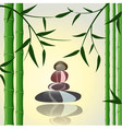 bamboo spa background vector image vector image