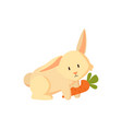 bunny with carrot veggie cute creature isolated vector image