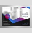 elegant professional geometric brochure vector image