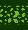 green leafs seamless background forest trees vector image