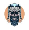 skull winter vector image vector image