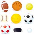 sport balls isoletad vector image vector image