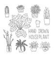 big set of hand drawn houseplants monstera bamboo vector image vector image