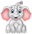 Cartoon cute baby elephant isolated vector image vector image