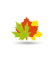 colorful autumn leaf icon set vector image vector image