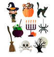 different items in order to perfectly celebrate vector image vector image