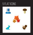 flat icon nature set of canadian tributary vector image vector image