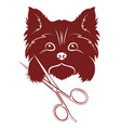 grooming dogs silhouette vector image vector image