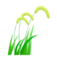 icon foxtail vector image vector image