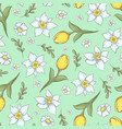 seamless pattern daffodils tulips hand drawing vector image vector image