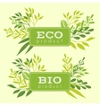 set eco and bio floral stickers banners vector image vector image