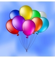 Balloons in the blue sky vector