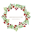Colorful hand drawn wreath of hawthorn vector image