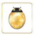ladybug gold insect small icon vector image vector image